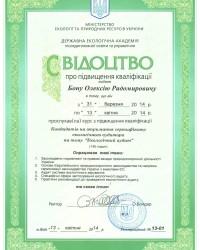 Свидетельство о повышении квалификации (Экологический аудит)